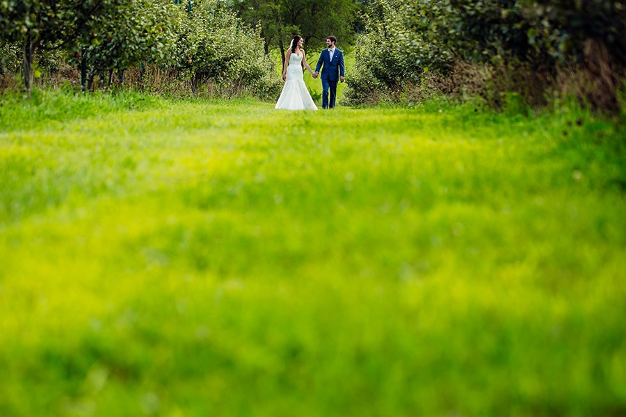 Orchard Ridge Farms wedding photography