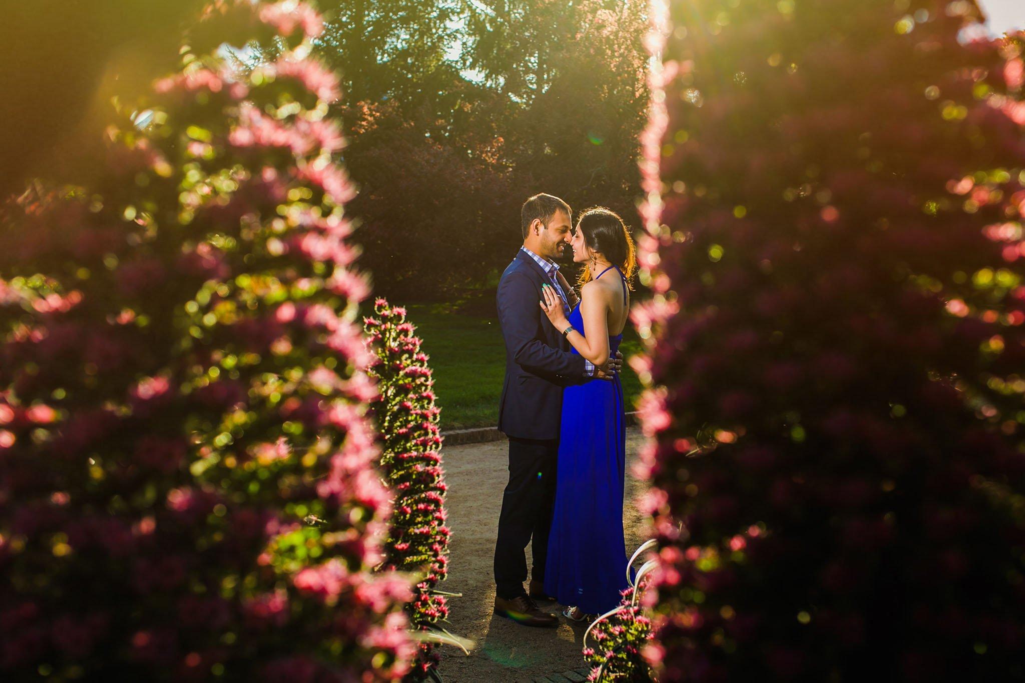 WS Photography » Chicago Botanic garden proposal / Khushbu & Ronak ...