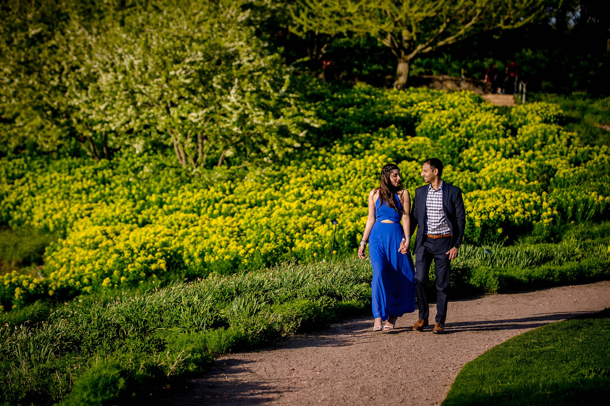 Ws Photography Chicago Botanic Garden Proposal Khushbu