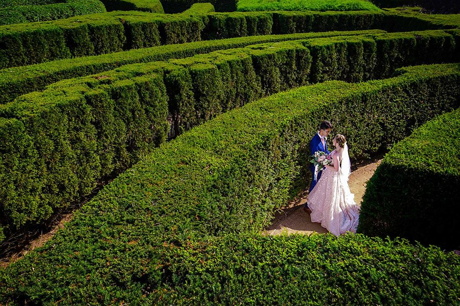 The Morton Arboretum wedding / Anessa & Omar