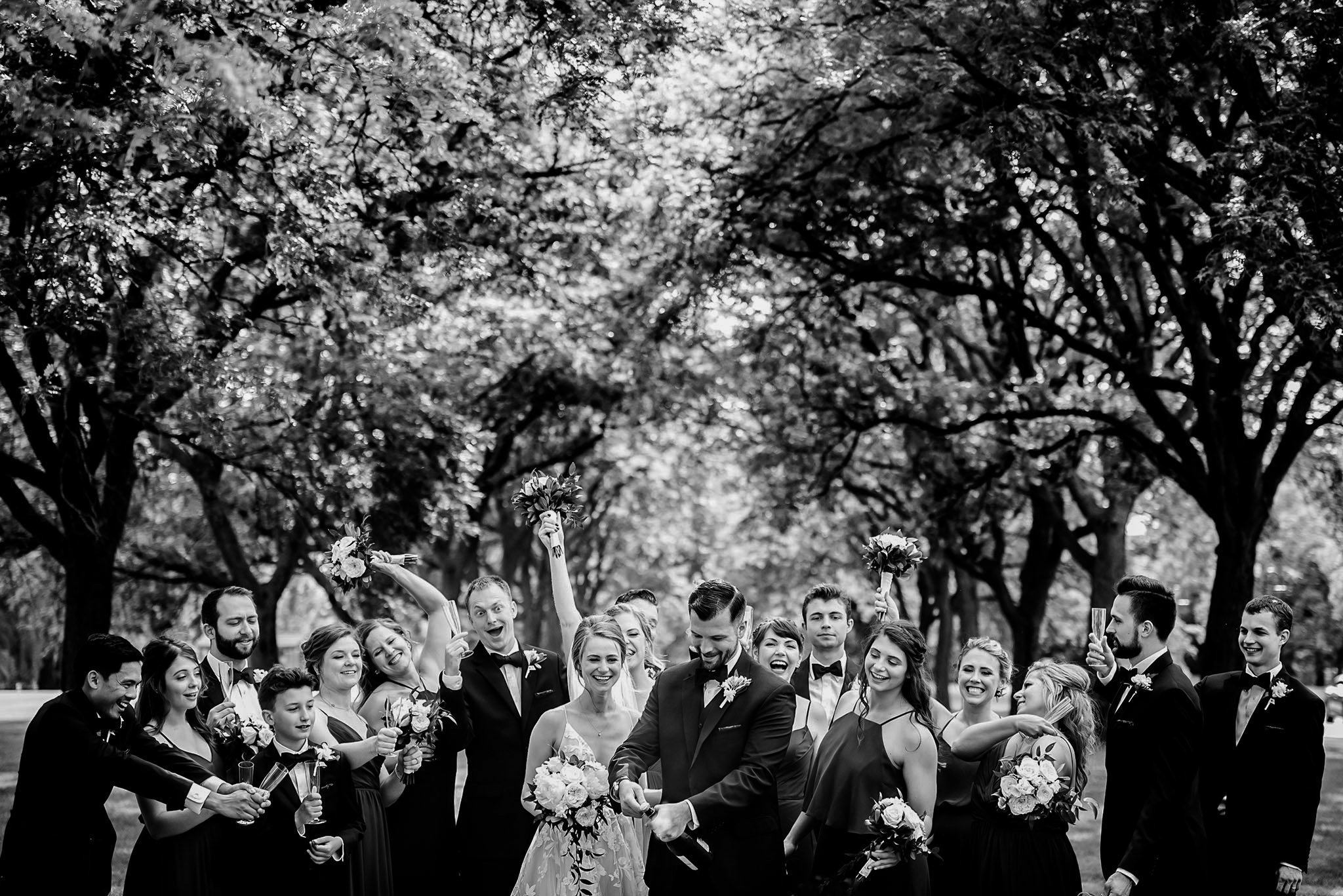 bride and groom with wedding party at cantigny park